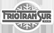 Logo Friotansur